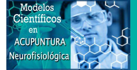 Modelos-científicos-en-Acupuntura-Neurofisiológica